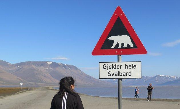 Fasinasjonen av isbjørnen lokket meg til Svalbard i sommer