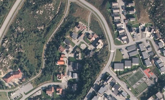 GRASDALEN: Naboene i Grasdalen på Lyefjell ønsker å bevare lerkeskogen sin.