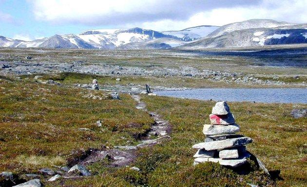 NATUR: Det er etablert en rekke nye nasjonalparker og andre store verneområder de siste årene. Omtrent 17 prosent av Fastlands-Norge er vernet etter naturmangfoldsloven, skriver Knut Bjørn Stokke og Jan Vidar Haukeland i denne kronikken.
