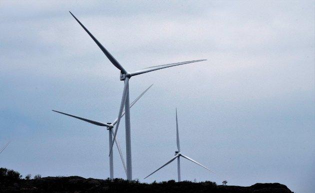 I VESTFOLD: Skogstraktene i grenseområdene mellom Vestfold, Telemark og Buskerud beskrives som velegnet for vindkraftutbygging. Norges Jeger- og Fiskerforbund avd. Vestfold er rykende uenig.