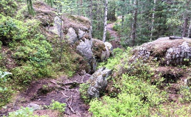 Ulendt terreng: Slik ser det ifølge innsenderen ut der Lørenskog kommune vurderer å legge en tre meter bred rulleskiløype i Haneborgåsen. Flatberg mener prosjektet vil medføre for store inngrep i Marka. Foto: Privat