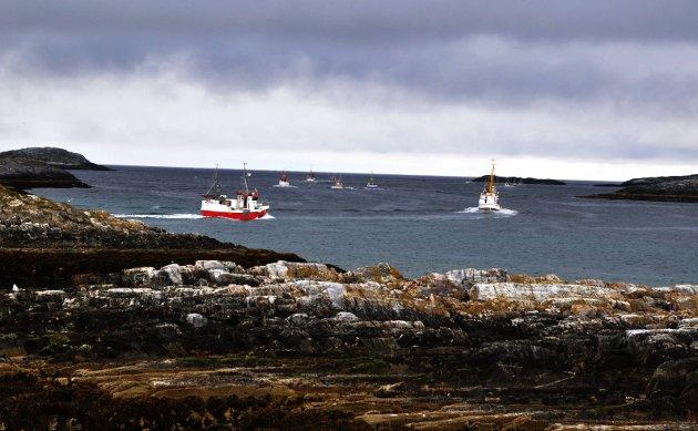 Som ordfører i fiskerikommunen Hasvik er jeg bekymret over at de fiskerike havområdene rund Sørøya er foreslått vernet helt inntil fjærsteinene med et verneareal på 3045 km2. Dette innbefatter tilnærmet 100% av de kystnære havområdene rundt Hasvik kommune, skriver ordfører Eva D. Husby. Bildet er tatt i Sørvær.