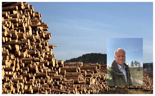 Gaute Nøkleholm, bestyrer, Romedal og Stange Almenning, mner at en betydelig andel av medlemsmassen i Mjøsen  flytter medlemskapet til Glommen- og Viken Skog, hvis det ikke blir fusjon.