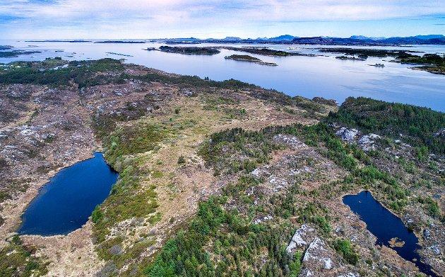 Øksnesmarka nordover mot Åråsvågen og Fensfjorden