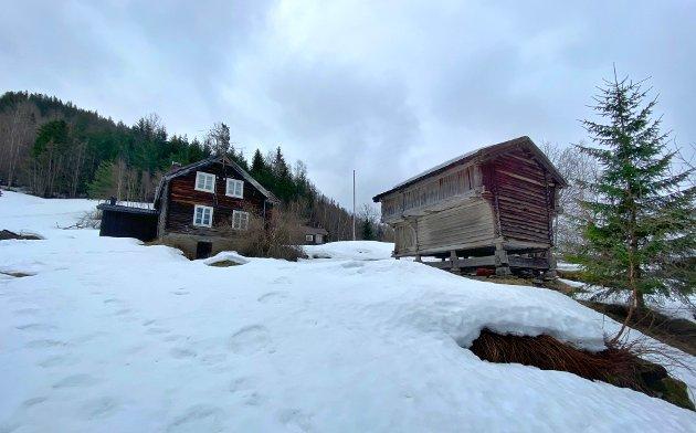 STRIDENS KJERNE: Dette er Bratterud i Rollag kommune. Etter å ha stått brakk i mange år, er den nå plutselig et hett samtaleemne i kommunen.