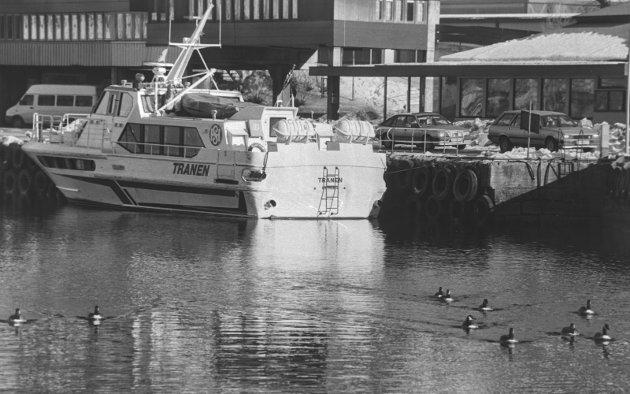 Hurtigbåt: Tranen og Canadagjess, Februar 1994.