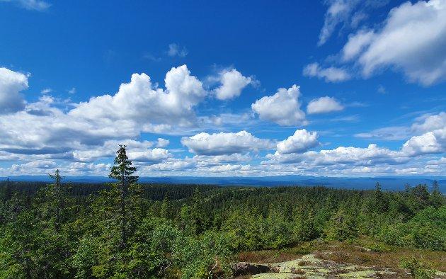 Breiliflaka: Breiliflaka er det nest høyeste punktet i Finnemarka med sine 702 moh, bare Brennåsen er høyere, 703 moh. Fra Breiliflaka kan man se både Blefjell, Vikerfjell, Norefjell og Vegglifjell
