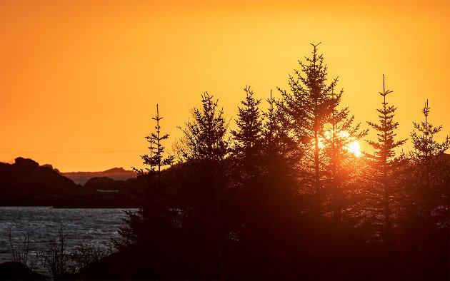 Hans Richard Andersen har tatt dette bildet av sola som titter litt over horisonten i Stamsund.