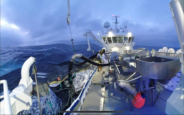 """. Vi har satset i troen på at vi kan stole på Stortinget, herunder Arbeiderpartiet som har stått fadder for dagens fiskeripolitikk, skriver kronikkforfatteren. På bildet er """"Nordhavet"""" i fangst."""