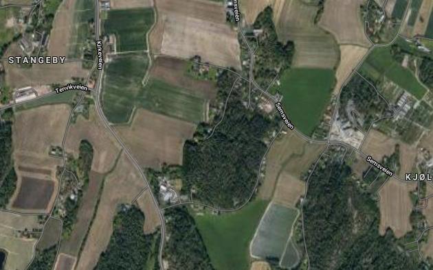 AKTUELT: Semsåsen sydøst for Borgheim er spilt inn som et mulig nytt boligområde i forbindelse med rulleringen av kommuneplanen i Færder. Grethe Danielsen er kritisk til å ta skogsområder til boligfelt.