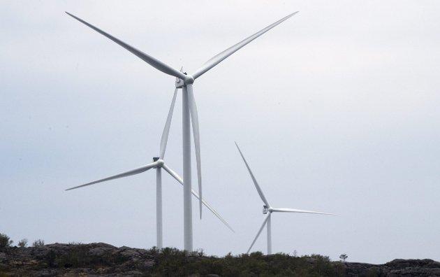– FN sidestiller kampen for natur med kampen for klimaet. Det er såleis heilt ubegripeleg at                                                          vindkraftindustrien får forrang framfor sårbare naturområde. Vindkraftmotstandarane er etter mitt skjøn dei som forvaltar både fornuft og framtid, skriv Oddny Miljeteig. ILLUSTRASJONSFOTO: NTB/Scanpix
