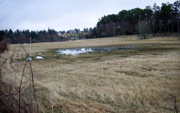 Vannområdet danner et tydelig skille mellom omsøkt del av foretningstomt nærmest, skriver innsender.