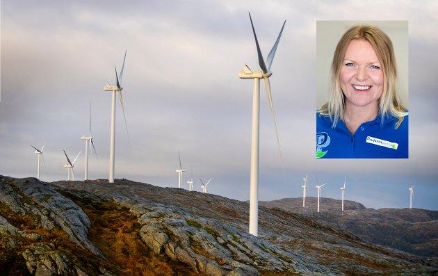KLIMA: Vindkraft er til skade for både natur, fugleliv og vindmøller består av materialer som etter hvert må skiftes ut, og som ikke kan gjenvinnes, skriver Lene Kristine Eikeland Aas, Pensjonistpartiet.