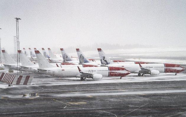 – Flytrafikken står stille, og ingen skip legger til kai. Grensene til våre naboland er sperret. Hva hadde skjedd i Norge da? Hvor raskt hadde vi innsett at vi måtte skaffe oss maten selv? spør Finn Bjørn Tønder etter å ha lest en bok der Island er avstengt fra resten av verden. FOTO: ARNE RISTESUND