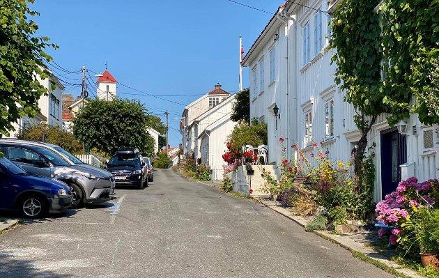 Innsenderen skriver at utstillere på Villvinmarkedet forsynte seg av blomsterbedet hennes i denne gata i Risør.
