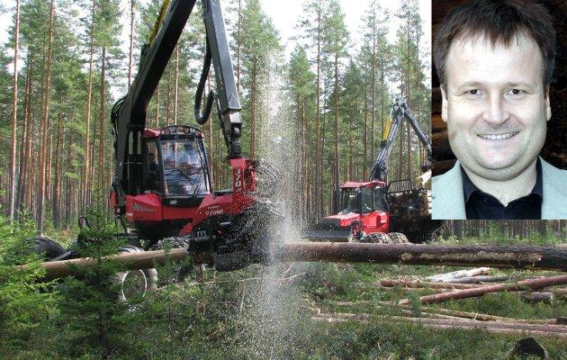 Skogen: – Det grønne karbon fra skogen er et viktig bidrag til å løse noen av de utfordringer vi står ovenfor. Det er vi mange som er enige om, både i skogkommunen Sør-Aurdal, skogfylket Innlandet, i staten og f.eks. i FNs klimapanel, skriver Lars Elsrud.