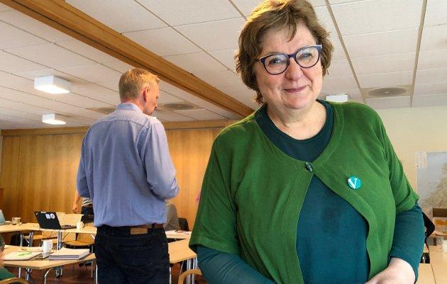 Utfordrer fylkesrådet: May Valle i Nordland Venstres fylkestinggruppe utfordrer AP, SP, SV og KrF. Arkivfoto Bildetekst
