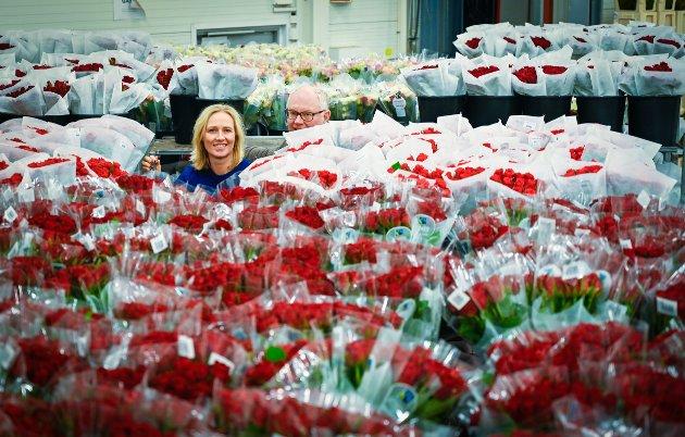 Markedsansvarlig Hege Hildeng og Adm. dir. Erling Ølstad i blomsterhavet på et av lagerrommene hos Mester Grønn.
