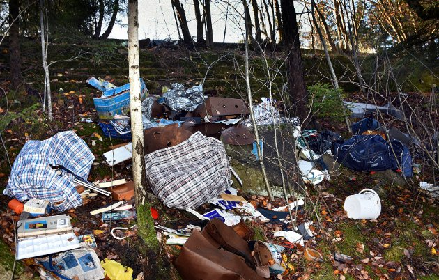 Søppel dumpet ved gamle Trøskenbrua, mot Mingevannet