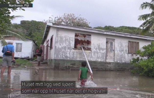 NRK hevder at havet stiger når det er øya som synker.