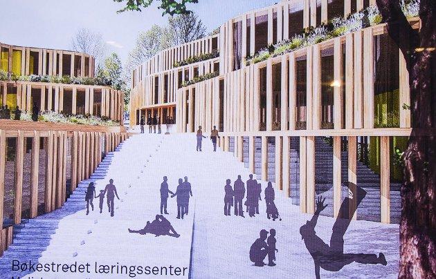 Samlet og sentralt: Her er Snøhettas arkitekt Ingebjørg Skaares illustrasjon til det mulige nye Larvik læringssenter.