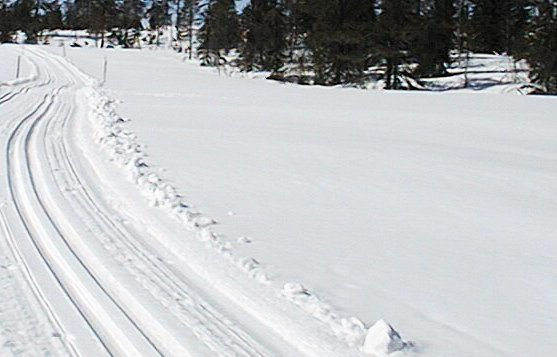 MIDT I: Mannen hadde konsekvent satt beina i de to sporene som skulle nytes med ski på beina.arkivfoto