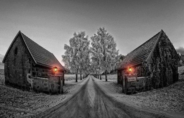 Januar: Alléen til Stein Gård hvor kombinasjonen mellom gråtoner og det varme lyset fra lyktene gir en fin effekt.
