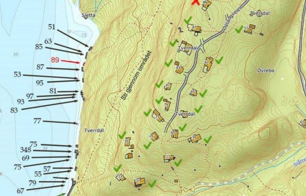 Eksisterende brygger (merket med svart) ligger tett i tett. Men akkurat det området hyttefamilien ønsker seg ei brygge (merket med rødt) må skjermes for turgåere, mener Arendal kommune.