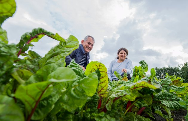Ivrige tilhengere av andelsgård: Gullala og Dara Mohammad gleder seg over det de kan dyrke på Nes. Dara fortalte nylig i en reportasje i FB at han lengtet etter selv å kunne dyrke grønnsaker siden han kom til Norge i 2002.