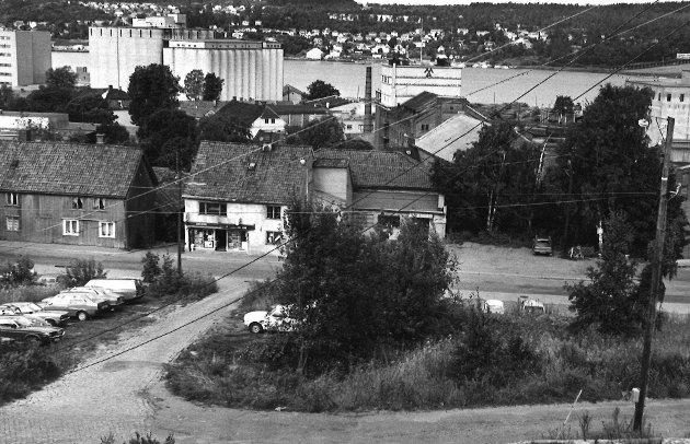 Utsikt fra Bjerget mot Mossesundet, 1978
