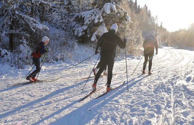 Maken til førjulsdag! Og for en innledning på skisesongen på Mangen. Selv om snømengden er sparsom, har Mangenfjellet turlag kunnet tilby skimuligheter siden ondag. Myrlia ble i all hast åpnet søndag, og de som valgte skiene og en tur i løypene på Mangen, enten via Myrlia til Aurset eller fra Vesle Garsjøen til Sætertjern, fikk en magisk vinteropplevelse. Det ble en skisøndag med et vær som en ikke opplever så alt for mange av i løpet av en vintersesong. Indre var en tur på Myrlia. Se hvem vi traff! (Alle foto: Øivind Eriksen)