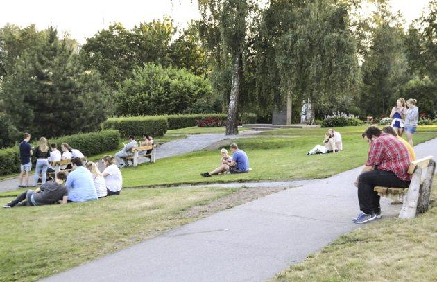Mange ringerikinger spiller Pokemon - her fra Nordre park.