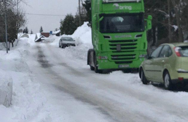ØNSKERSKILTOGKONTROLL: Lise Marie Knutsen påpeker at ulovlig hensatte lastebiler i kombinasjon med mye snø gir trafikkproblemer.