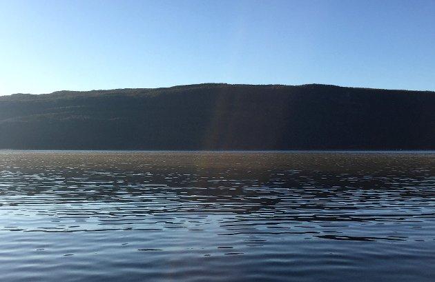 IKKE I TVIL: Ville en trål- og notfri Ofotfjord, ut til Kjeldbotn- Evenes, blitt en fjord med mye mer fisk? Jeg er ikke i tvil om det, skriver Knut Adolfsen.