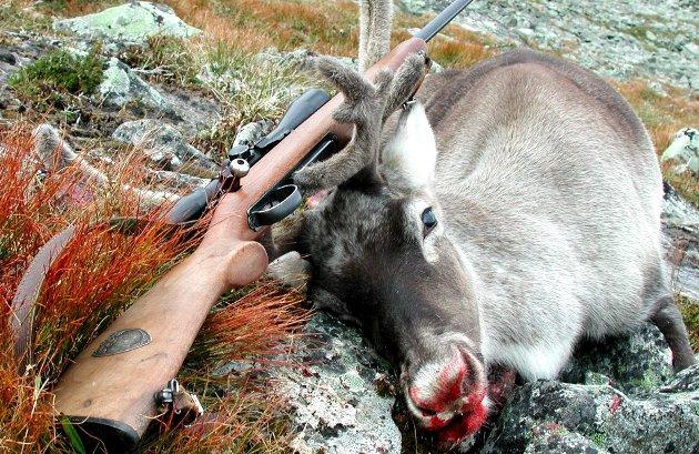 Fortrinnsrett: Lovutvalget rører ikke den lokale fortrinnsretten til jakt og fiske, men begrunner i stedet hvorfor det bør være som det er. Det klapper nok gudbrandsdøler flest for.Foto: Vidar Heitkøtter