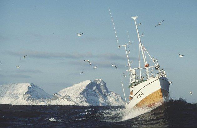 Mellomkrigstiden: Troms og Finnmark Fylkesfiskarlag vil melde seg ut av Norges Fiskarlag. Dermed er en på god vei tilbake til lagets situasjonen i mellomkrigstiden. Foto: NTB