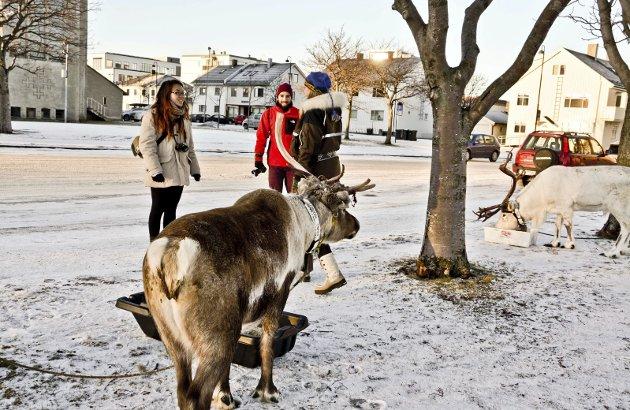 Anerkjennelse: Bodø var tidlig ute med å arrangere samisk uke, og søknaden om å bli kulturhovedstad er også en anerkjennelse av det samiske som en ressurs for regionen.
