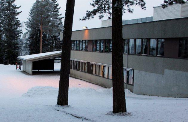 Auli skole har i dag i overkant av 200 elever, det tilsvarer en full klasse på ungdomstrinnet. Sørum kommune har i dag ikke kapasitet til å ta imot disse elevene, skriver innsenderen.
