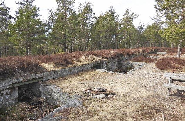 Vetaåsen batteri ble anlagt i 1902 og var bygget for fire kanoner. Brystvernet er cirka 45 meter langt. (Foto: Erling Bakken)