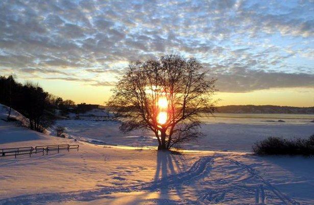 Idyll: Rekkeviksbukta som vinteridyll på et arkivfoto av Bjørnar Borgersen. Ute i bukta, t.h. omtrent midt i bildet, ser du Malesjøsk.