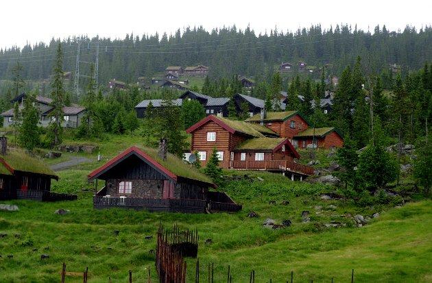 Fart: Det skal bli mer fart i Hafjell sommerstid. Mer sommerfart trenger også andre alpinlandsbyer.