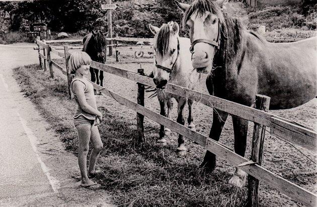 Fra den gang det gikk hester ved Kalstadveien, ved Nordre Kalstad.