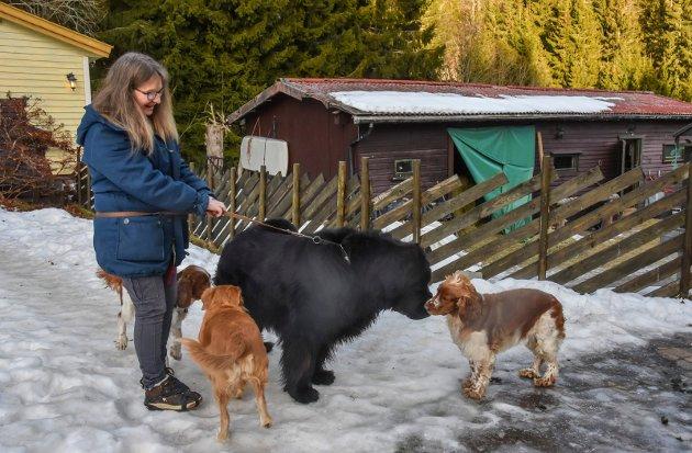 Dagpass for både store og små firbente hos Kirsti Marie Lager Lyngås.