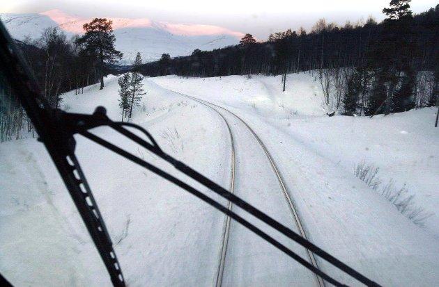 Brevskriveren er bekymret for hva som skjer med Nordlandsbanen, og oppfordrer næringsliv og kommuner i fylket til å ta situasjonen på alvor.