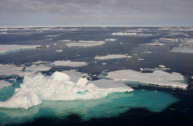 - Det beste ville selvsagt være å verne hele området mot oljevirksomhet, skriver Tone Toft og Bjørn Økern fra Naturvernforbundet i Nordland.