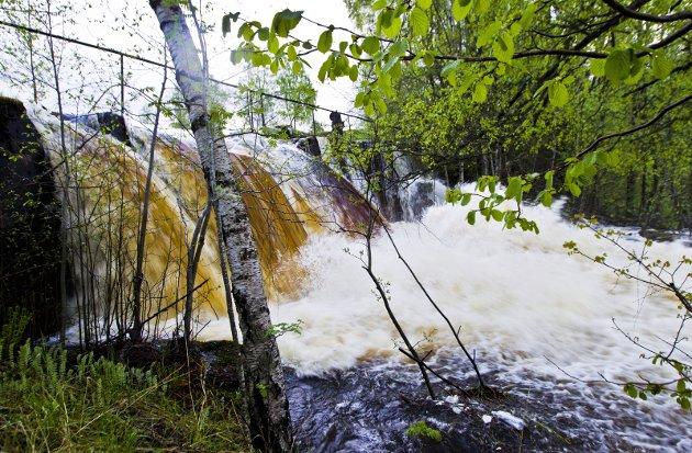 Lokal sikring: Vannet må i større grad håndteres lokalt, med løsninger som grønne tak, infiltrasjon i grunnen og fordrøyning i dammer, skriver innsenderen fra interesseorganisasjonen Norsk Vann. Illustrasjonsfoto: NTB scanpix