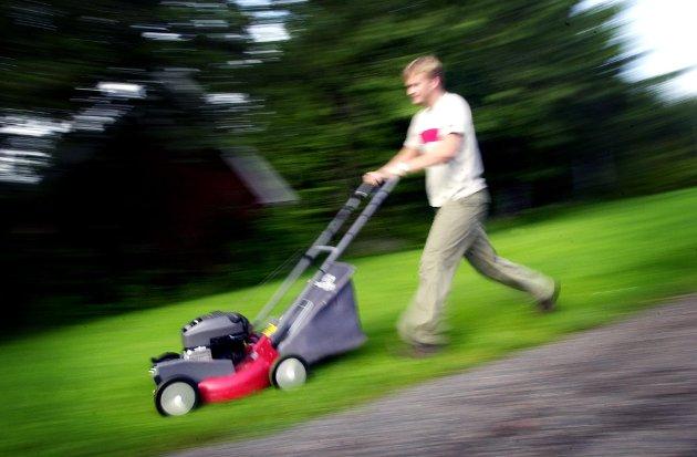 SØNDAG I VILLAVEIEN: Kom skal vi klippe gresset i dag...