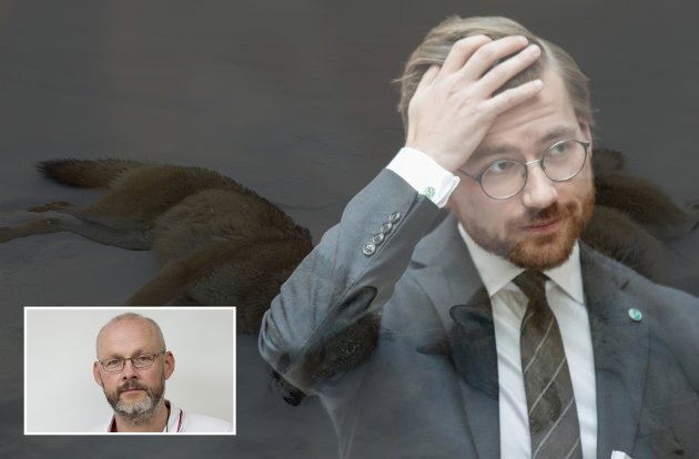 Miljøminister Sveinung Rotevatn vil redusere din og min mulighet til å stille politikere til rette for rovviltforvaltningen. (Fotomontasje)Foto: Scanpix