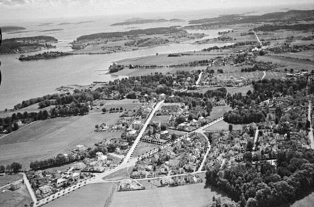 ALLEER: Historisk bilde av Teie veidele, tatt fra luften. Bildet er tatt ca 1938/1939. Legg merke til de flotte alleene av trær.