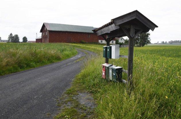 Høyre-leder Kristin Remme har postkasse i Selteveien, selv om hun ikke bor der.